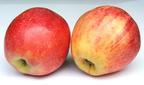 Miért értékes az almahéj?