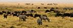 A Serengeti Nemzeti Park