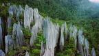Gunung Mulu Nemzeti Park - A denevérek birodalma