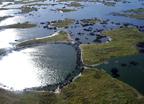 Pantanal, a legnagyobb mocsárvilág