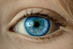 Az emberi szem szakkádikus mozgásai