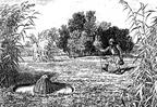 Csíkászat - Az ingólápok elfeledett mestersége