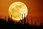 Miért látszik nagyobbnak a kelő Hold?