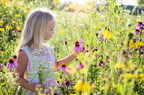A pollenallergia okai és tünetei