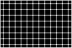 A Hermann-rács illúziója