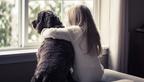 Hallássérült-segítő kutya, egy odaadó társ a csendben