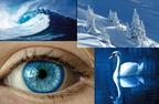 Kék szín a természetben