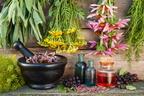 Gyógynövényekkel a tavaszi fülproblémák ellen