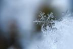 Lehetséges két egyforma hópehely?